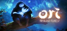 Ori and the Blind Forest系统需求