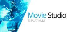 VEGAS Movie Studio 13 Platinum - Steam Powered系统需求